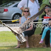 MDEP-11-06-2017-050. Crowds watch the Fens Falconry display. Diss Carnival 2017