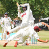 MBFP-06-08-2016-021 Bury v Sudbury Cricket great fielding by Sudbury Bury Free Press 06.08.2016