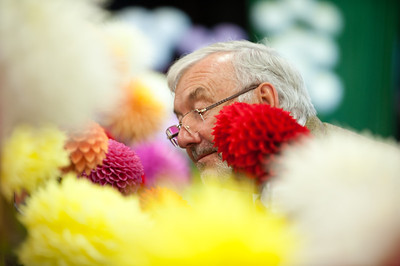 Chipping Horticultural Show