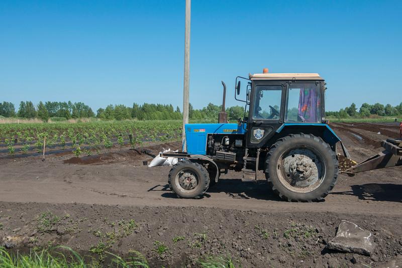 A tractor at a plantation in the Polesie area, Belarus. © Daniel Rosengren