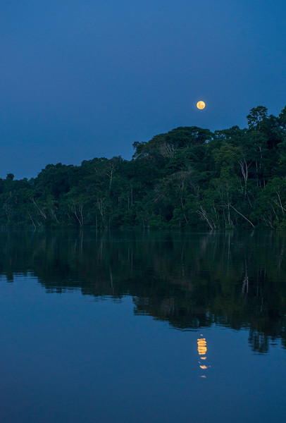 Full moon over the Yaguas, Peru. © Daniel Rosengren