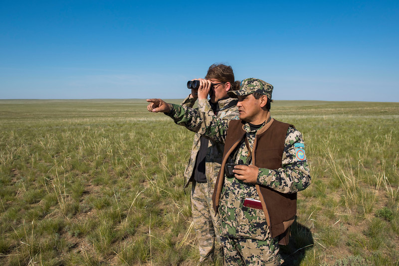 Project manager Steffen Zuther and a ranger looking at a large group of Saigas in the area near Andasaiskiy Nature Sanctuary (Zakaznik), Kazakhstan. © Daniel Rosengren