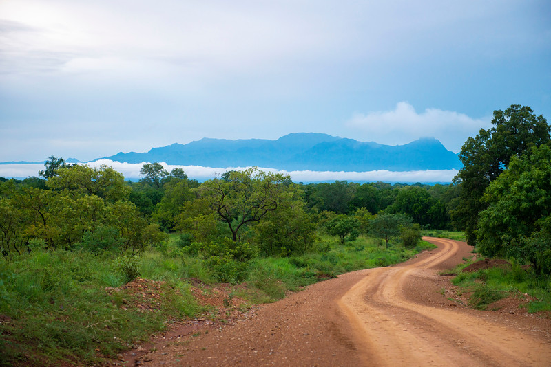 A road going through Selous GR with the mountains of Uluguru Mountains seen in the background. Selous Game Reserve, Tanzania. © Daniel Rosengren / FZS