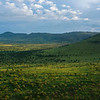 A woodland landscape in the Serengeti NP, Tanzania. © Daniel Rosengren