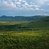 A woodland landscape in the Serengeti NP, Tanzania. © Daniel Rosengren