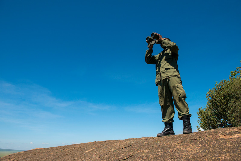 TANAPA rangers are constantly surveilling the area keeping track of the rhinos as well as looking out for poachers and misbehaving tourists. Serengeti National Park, Tanzania. © Daniel Rosengren / FZS