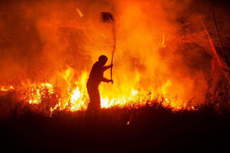 A person trying to limit a bushfire by beating it with a special tool. Many fires in Serengeti are started by park authorities or poachers. After the rain on a burnt area the grass gets really green and attracts a lot of animals. Serengeti National park, Tanzania. © Daniel Rosengren / FZS