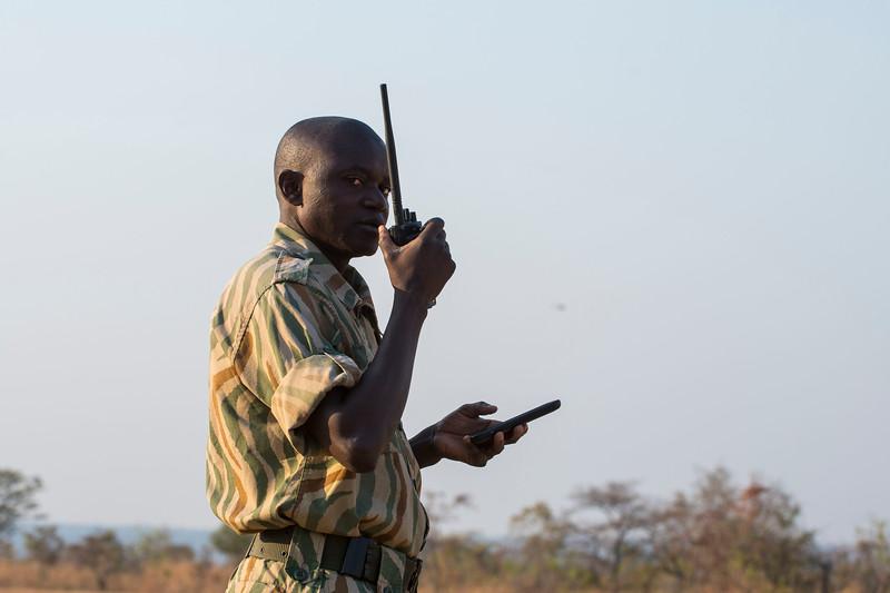 A ranger communication on a radio. North Luangwa National Park, Zambia. © Daniel Rosengren / FZS