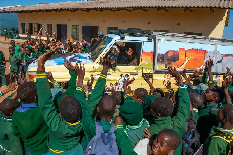 Children at the Makhosiya Primary School, Chiredzi greeting the Chilojo Club Education Programme car with the teacher, Ezekia Chauke, in it. Near Gonarezhou NP, Zimbabwe. FZS teach children around the park about nature and conservation. © Daniel Rosengren / FZS