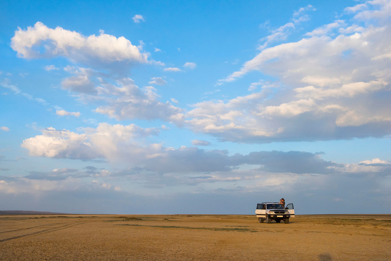 FZS project manager Steffen Zuther scanning the horizon for Saigas. On a salt plain in the Irgiz-Turgai reserve, Central Kazakhstan. © Daniel Rosengren / FZS