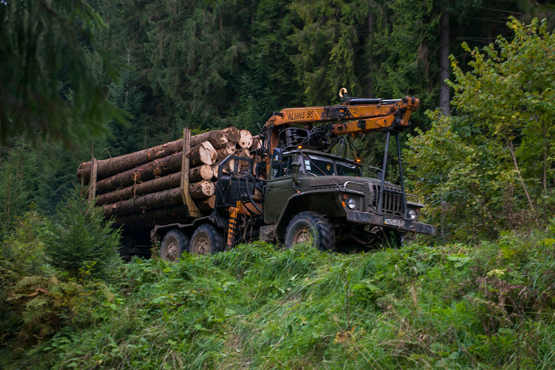 Logging activity in the Carpathian Mountains, Ukraine. @ Daniel Rosengren / FZS