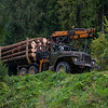 Logging activity in the Carpathian Mountains, Ukraine. @ Daniel Rosengren / FZS