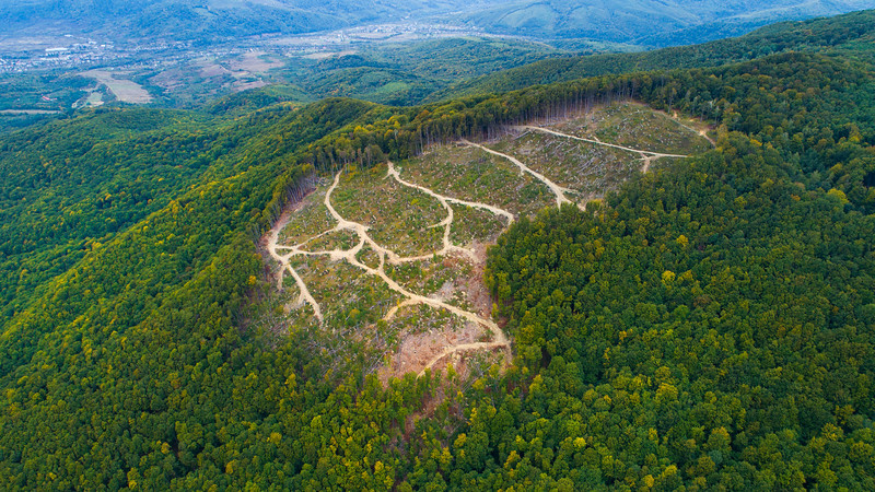 An aerial drone photo over a clearcut in the Uzhanskiy National Nature Park, Ukraine. © Daniel Rosengren / FZS