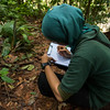 Siti Fatimatazzahra, orangutan trainer, taking regular notes on the behavoiur of the orangutans out on jungle school. At the Field station at Open Orangutan Sanctuary, near Bukit Tigapuluh, Sumatra, Indonesia. © Daniel Rosengren
