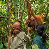 Staff, Riris Prawesti (left), at the SORC station is trying to lure (with juice and fruits) an orangutan down low, so they can treat a wound on her neck. Mira Margaretha is applying a parasite killing liquid on the neck while the orangutan is drinking. © Daniel Rosengren