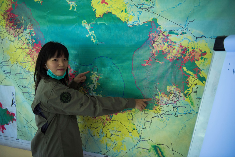 Mira Margaretha pointing out the two orangutan stations on a map of Bukit Tigapuluh. Jambi office, Sumatra, Indonesia. © Daniel Rosengren
