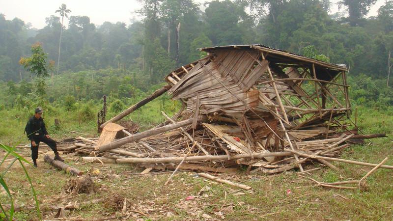 Sumatra Elephant Project