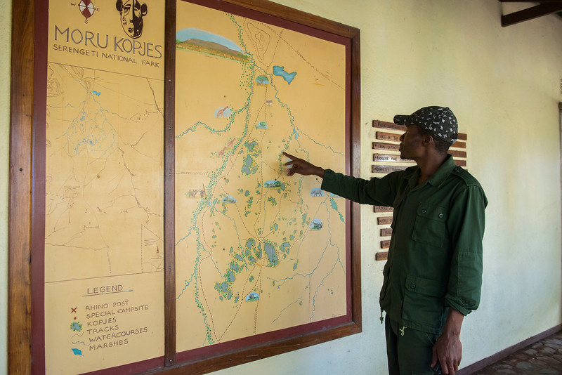 A Moru rhino ranger showing a map of the Moru area. Moru, Serengeti, Tanzania. © Daniel Rosengren