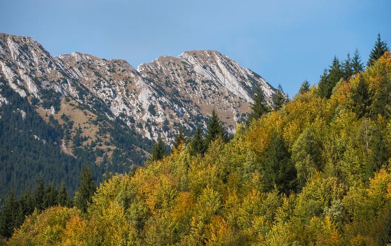 Carpathian Mountains - landscape and project work(2015)