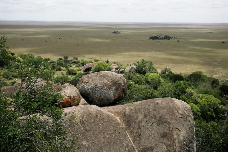 Norbert Guthier<br /> <br /> Serengeti