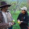 Luz Marina Pumachapi (right) and a local farmer, Domingo Davalos, in Patanmarca looking at passion fruits. This farmer gets FZS support and education to start up Physalis cultivation. Peru. © Daniel Rosengren