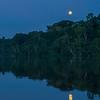 Full moon over the Yaguas, Peru. © Daniel Rosengren