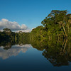 The rainforest along the River Yaguas, Peru. © Daniel Rosengren