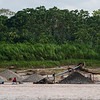 People extracting gold from the River Madre de Dios, just outside of Boca Colorado, Peru. Water and the bottom sand is dredged and filtered to extract the gold. Mercury is used to extract the gold from the filtering carpets. This is of course an environmental disaster where the geology of areas is abused and the environment poisoned. Each gold miner may be on a small scale, but since there are so many of them, the damage is very large scale. © Daniel Rosengren