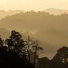 A view over Bukit Tigapuluh NP at sunrise, Sumatra, Indonesia. © Daniel Rosengren / FZS