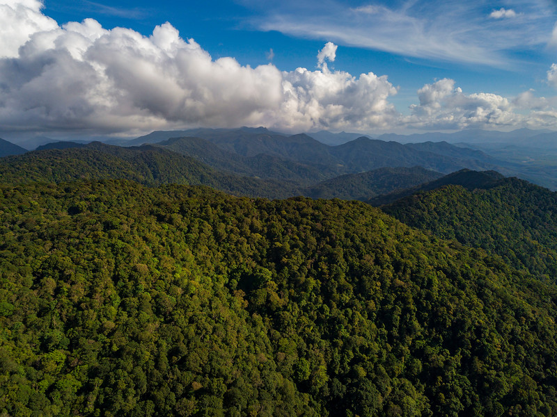 An aerial photo over the forest of Kon Ka Kinh NP, Vietnam. @ Daniel Rosengren / FZS