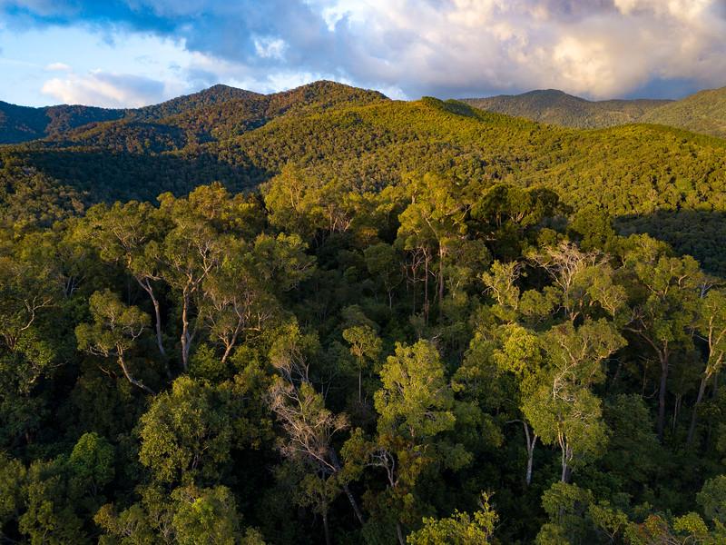 An aerial photo over the forest of Kon Ka Kinh NP, Vietnam. @ Daniel Rosengren / FZS