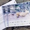 """""""Sagt es laut"""" Poster & Broschüre © ZGF"""