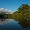 The rainforest along the River Yaguas, Peru. © Daniel Rosengren / FZS