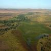 Aerial Serengeti