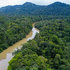 An aerial photo over the Kanuku Mountains Protected Area, Guyana. The Rupununi River flows from the mountains. © Daniel Rosengren / FZS