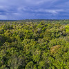 An aerial photo over the Kanuku Mountains Protected Area, Guyana. © Daniel Rosengren / FZS