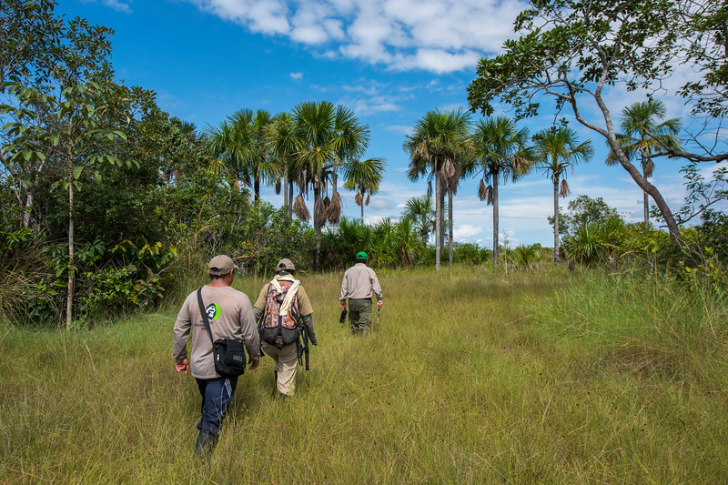 FZS staff, and a SERNANP park ranger at Pampas del Heath, Bahuaja Sonene NP, Peru. © Daniel Rosengren / FZS