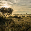 The Pampas del Heath, Peru, Bahuaja Sonene NP. © Daniel Rosengren / FZS