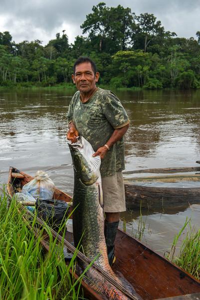 A local fisherman with an arapaima or Paiche near Yaguas, Peru. © Daniel Rosengren / FZS