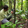 Claus Garcia setting a camera trap in the Yaguas, Peru. © Daniel Rosengren / FZS