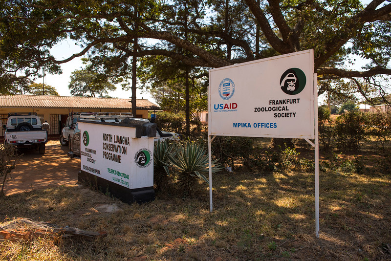 At the office complex where the FZS office is located. Mpika, Zambia. © Daniel Rosengren