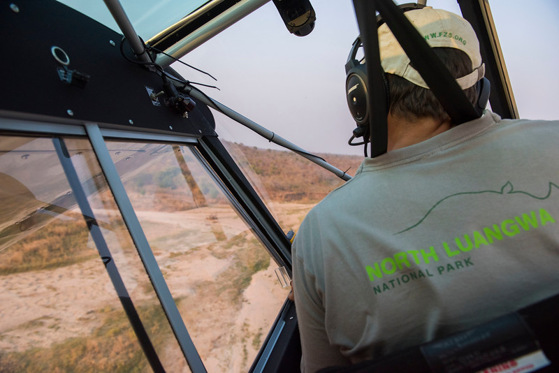 Ed Sayer flying the FZS Husky plane in North Luangwa NP, Zambia. © Daniel Rosengren