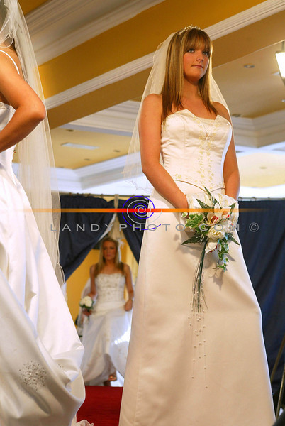Some of the dresses from Finess Bridal Boutique shown at the Listowel Wedding Fair at the Listowel Arms Hotel.<br /> pic Manuela Dei Grandi/Landy Photo