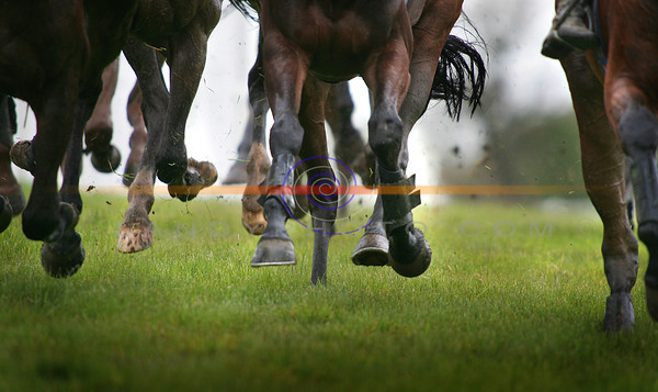 Wet and soggy conditions at Listowel Races. Photo Brendan Landy