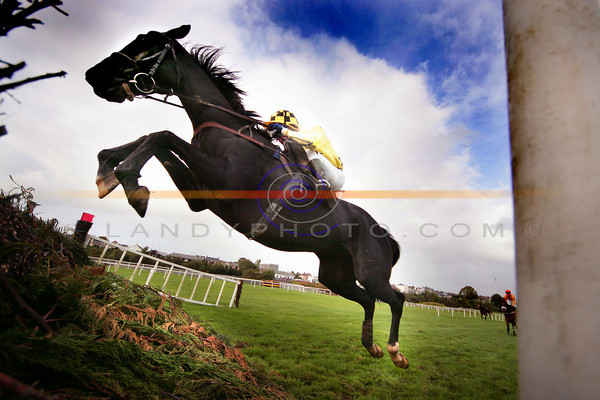 Md Grant get a good leep out of his mount Mister Kilford in the Beginners Steeplechase at Listowel races on Monday.<br /> Pic Brendan Landy