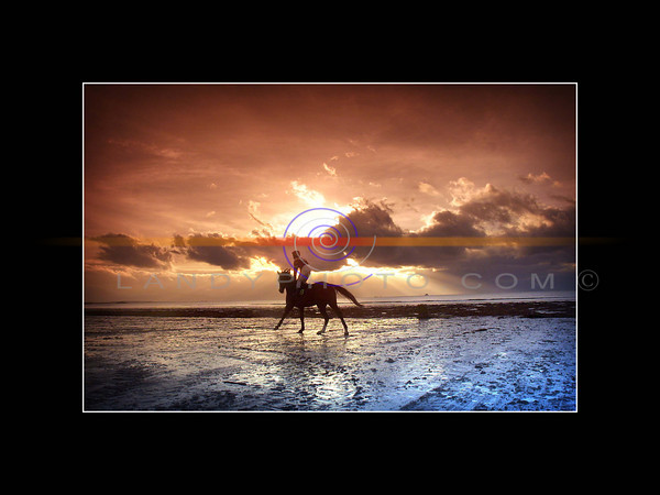 A jockey  trots his  horse  on the strand in Ballyheige  for the final race of the day as the sun begins to set in the background.<br /> Pic Brendan Landy