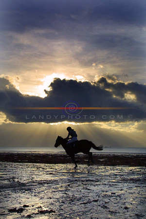Rays of Light cast shadows on the beach in Ballyheigue as a lone rider  completes the course at  teh annual races that this year were held on the strand.<br /> Pic Brendan Landy