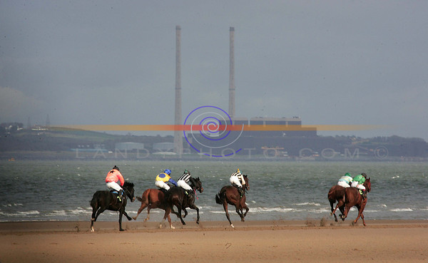Powerfull racing...<br /> Action from the Open Maiden the closing race of the flapping season as they gallop past the river shannon and Moneypoint Gererating Station at the Asdee Races .<br /> Pic Brendan Landy