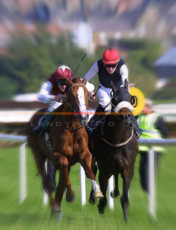 Flat out fas action in fast  firm ground was the order of the days racing in Listowel on tuesday.<br /> Pic Brendan Landy