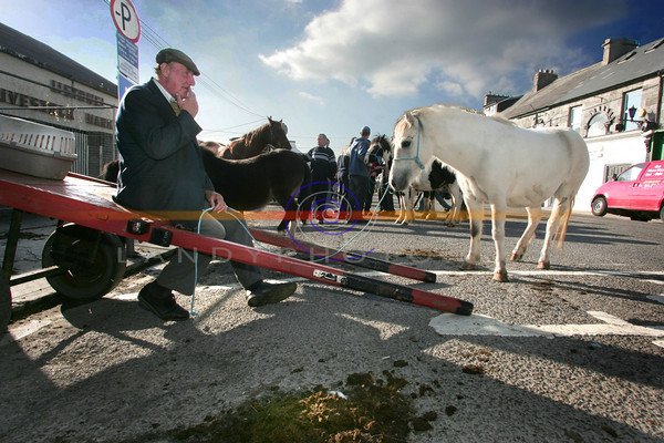 Tom Collenan from Ennis waits for the last sale, at the final horse fair to be held in Market St in Listowel, the tradition that has held for over a hundred years of the horse sale a week or 2 after the famous  Listowel Festival Racing  has finaly come to an end.<br /> pic Brendan Landy
